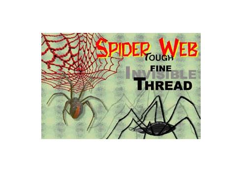 HILO INVISIBLE SPIDER